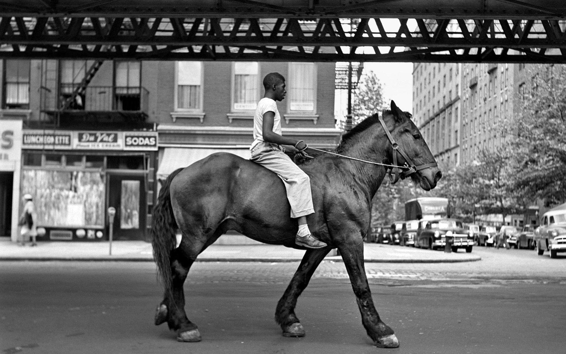 Man-on-horse-vivian-maier-photo-picture-for-desktop-1
