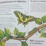 child-books-3