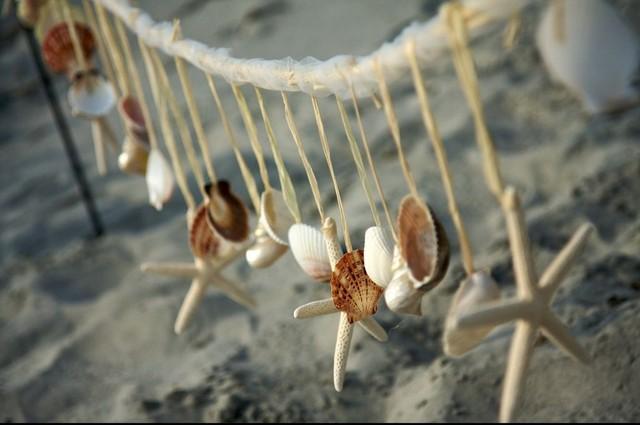 seashell-decor-cover