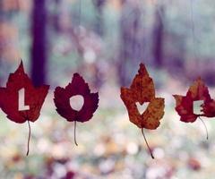 autumn-leaves-love-decor
