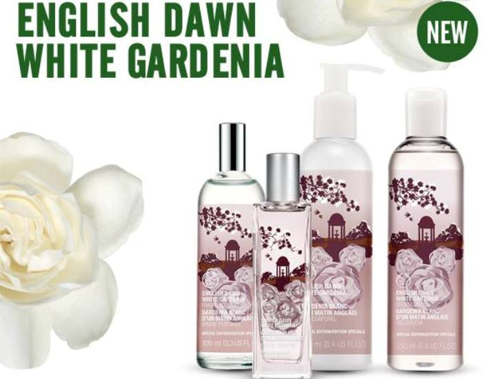 english-dawn-white-gardenia