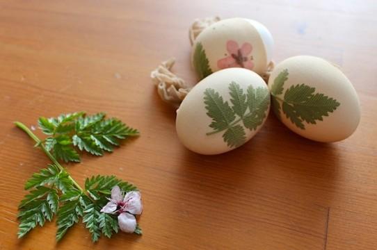 diy-eggs-cover