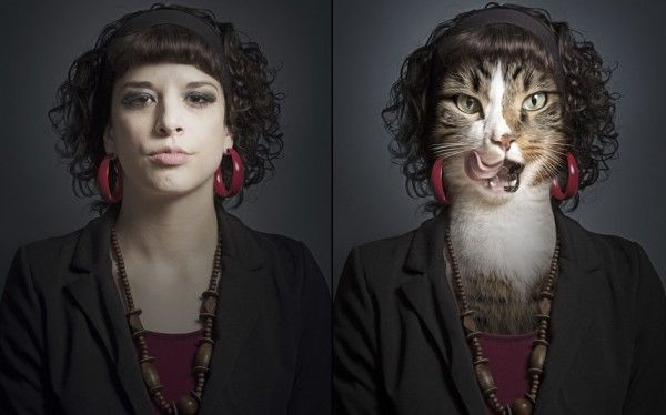 Undercats-cats-as-humans-by-Sebastian-Magnani