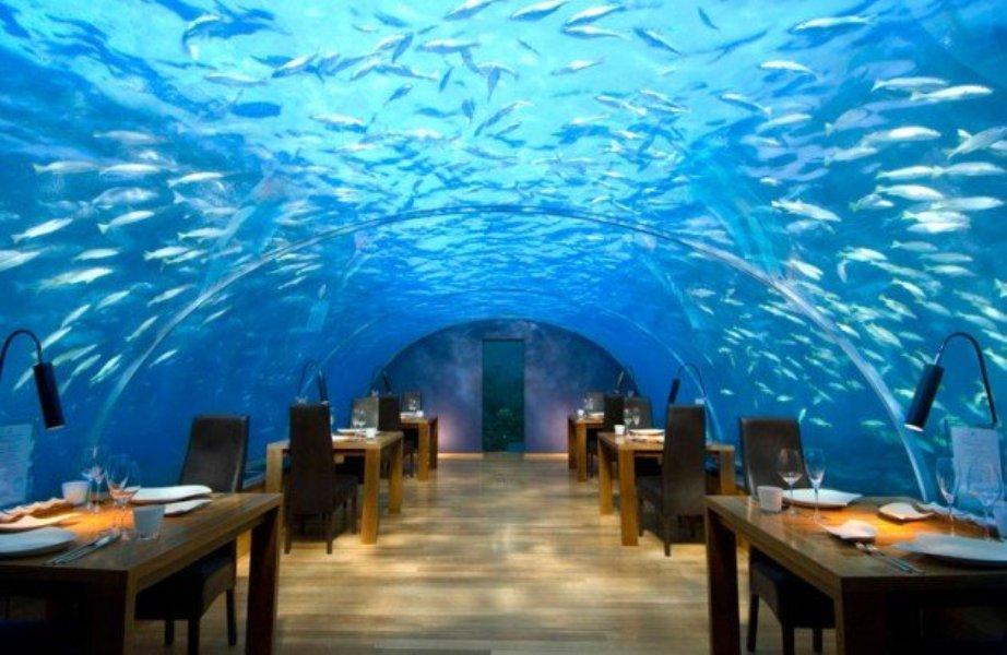 Ithaa-Restaurant-Maldives-630x410