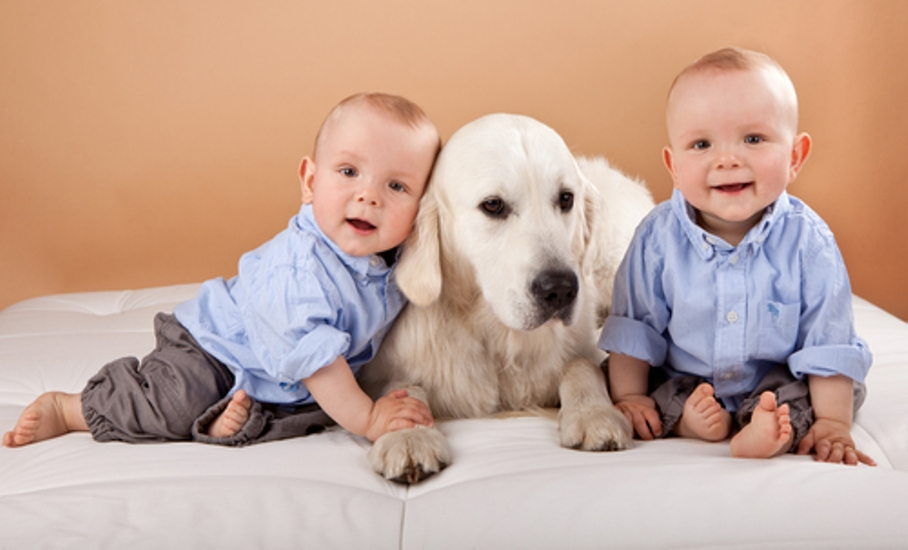 Kids-Pets-Healthy-07-10-12