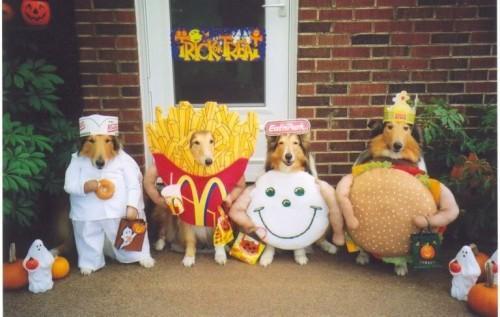 7-dog-mcdonalds-costumes-french-fried-burger