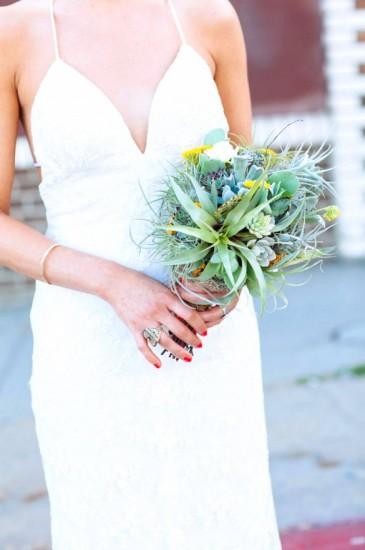 bridal-flower-air-plant