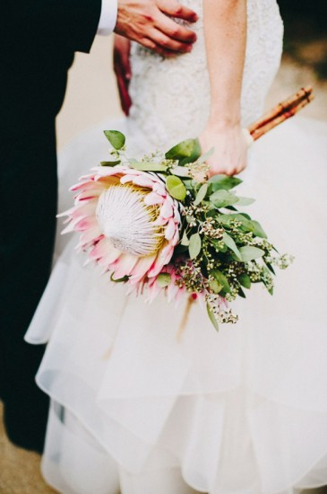 bridal-flower-protea