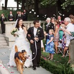 συμμετοχή σκύλου σε γάμο