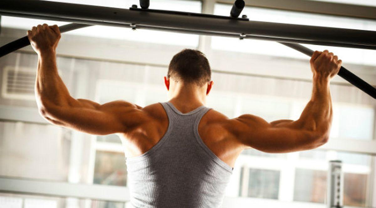 back-gym