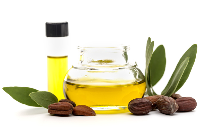 Jojoba oil, seeds and leaves