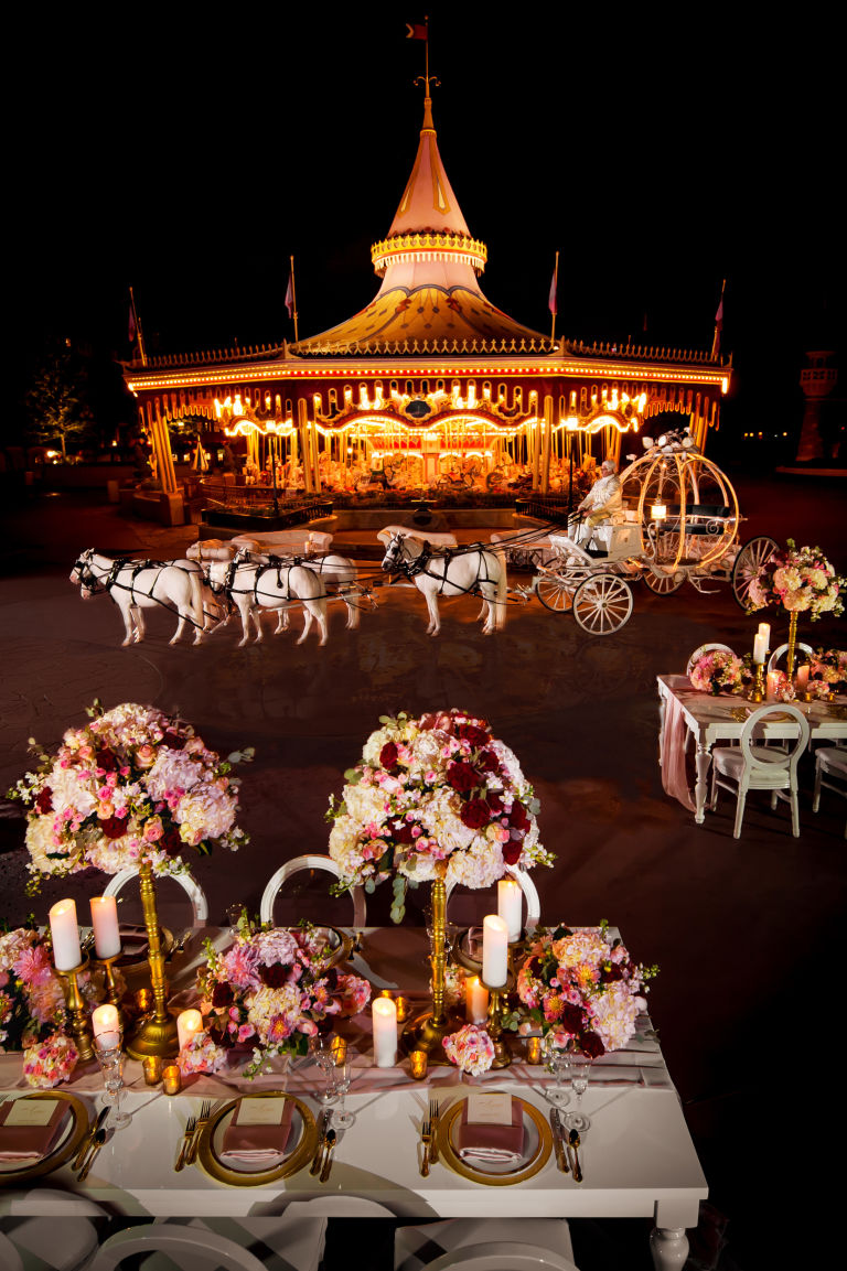 magic-kingdom-wedding-night