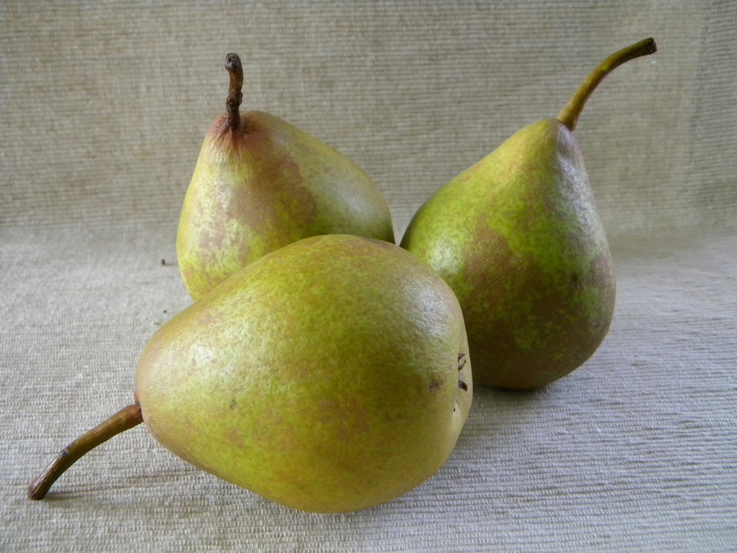 pears (Large)