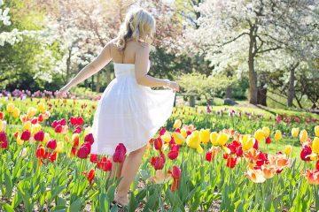 spring-2298282_960_720