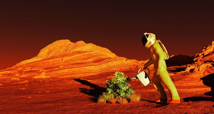 Red Planet 1