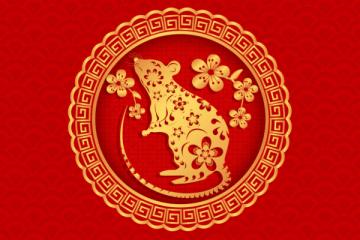 κινέζικο ζώδιο